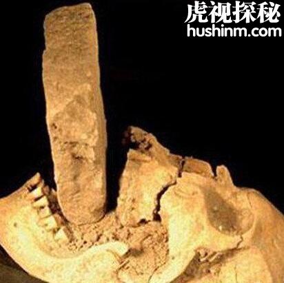 探秘这棵古老的头颅到底是人类还是外星人的