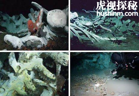"""世界五大海底坟墓 亚特兰蒂斯遗址和""""巨人骷髅"""""""