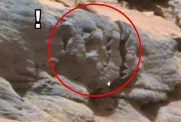 火星上发现一骷髅头 像是地上外星人的头骨