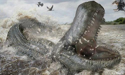 普鲁斯鳄,咬合力竟比霸王龙还大